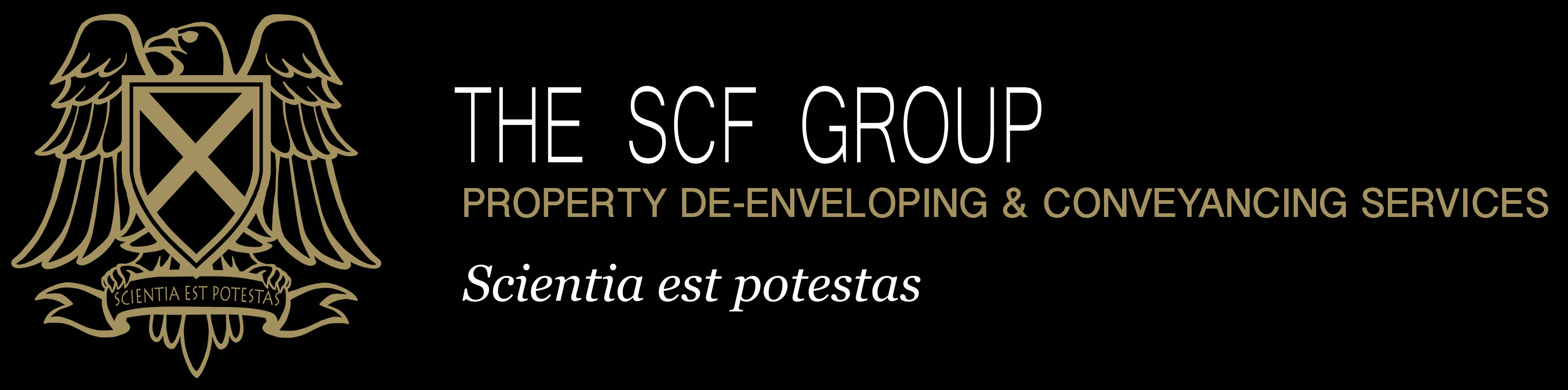 SCF TAX CONSULTANCY Logo
